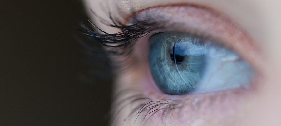 Ocular Therapeutix Shares Rise 25% After Firm Reports 250% Sequential Increase in Q3 Revenue